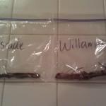 Willamette and Cascade hop bines