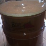 Carboy of apple cider