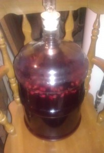 Mixed Berry Melomel Conditioning