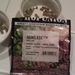 Mosaic hops brew day