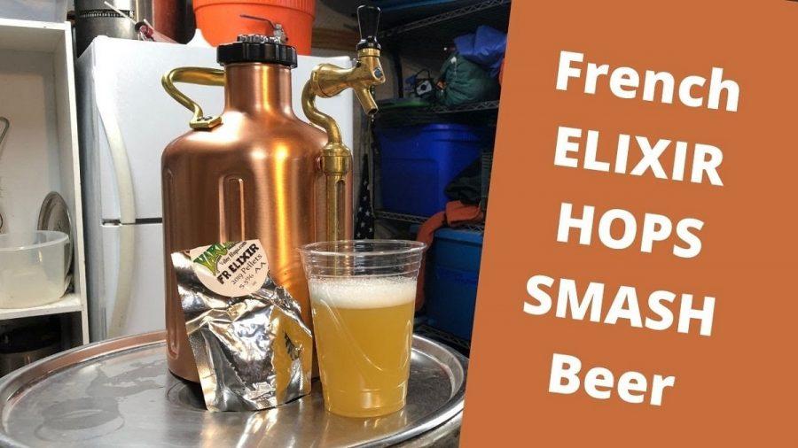 Elixir Hops SMaSH Beer