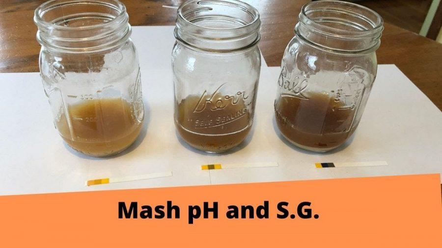 Mash pH and Temperature Experiments